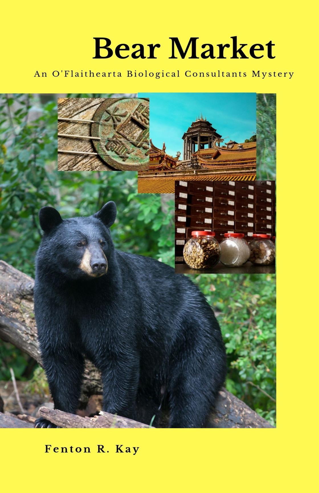 Bear Market-Cover-1